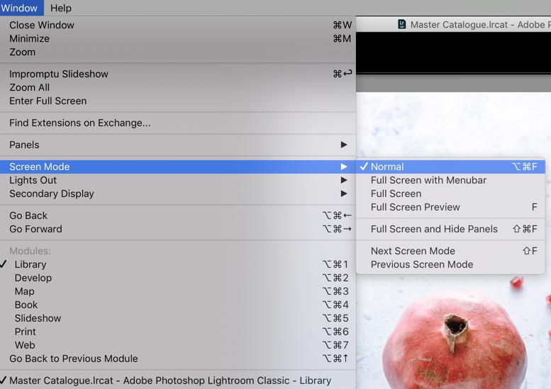 Full Screen Mode Lightroom-Darina Kopcok-DPS