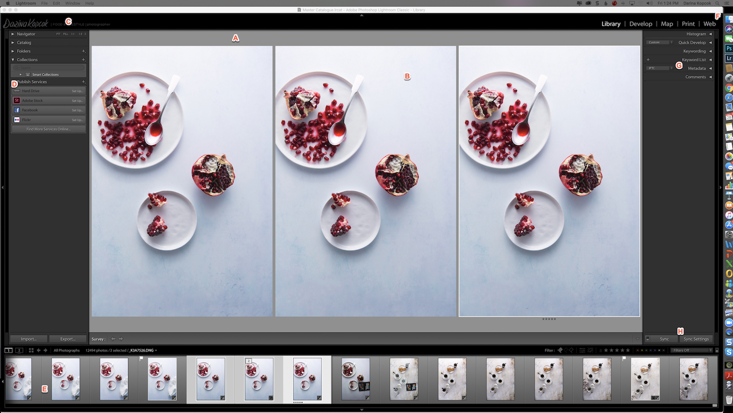 Lightroom Panels-Darina Kopcok-DPS