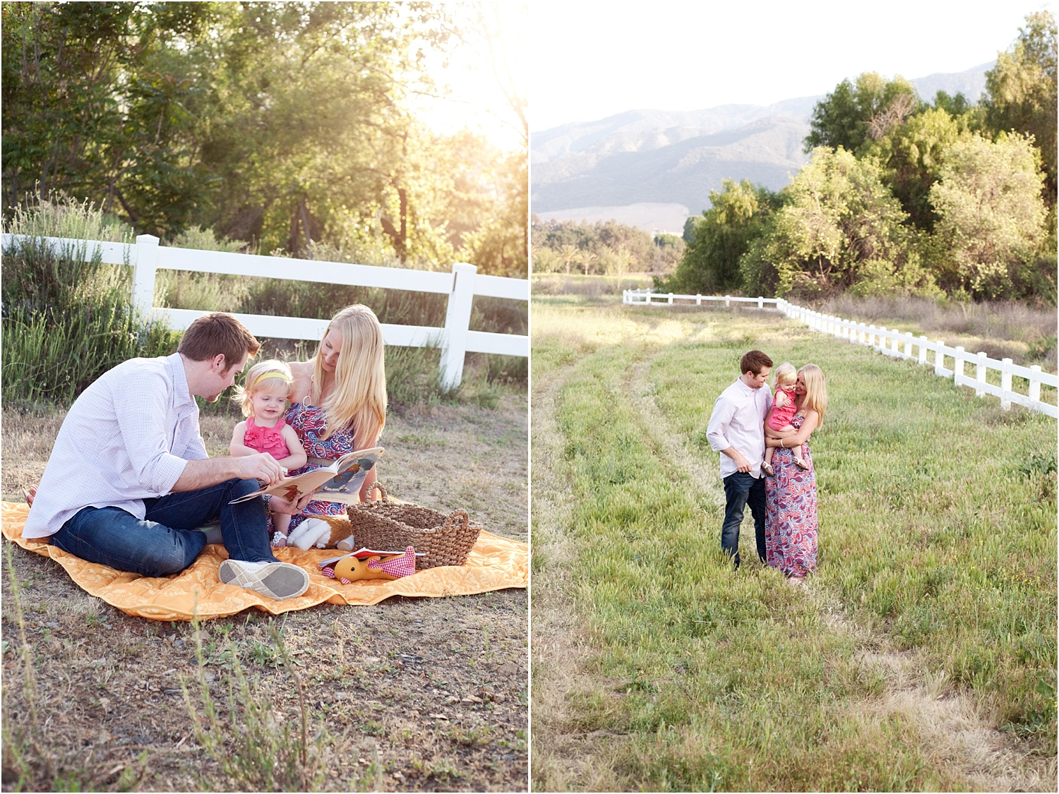 1 - Photographing Mini-Sessions