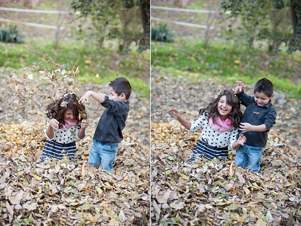 20 - Photographing Mini-Sessions