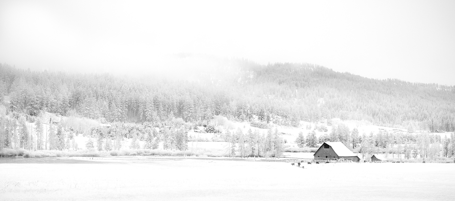 Image: Snowscapes Can take you most of the way to a high key image right out of the camera.