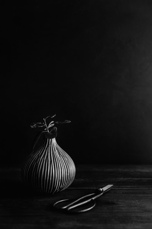 Develop Better Black and White Images in Lightroom-Darina Kopcok-DPS