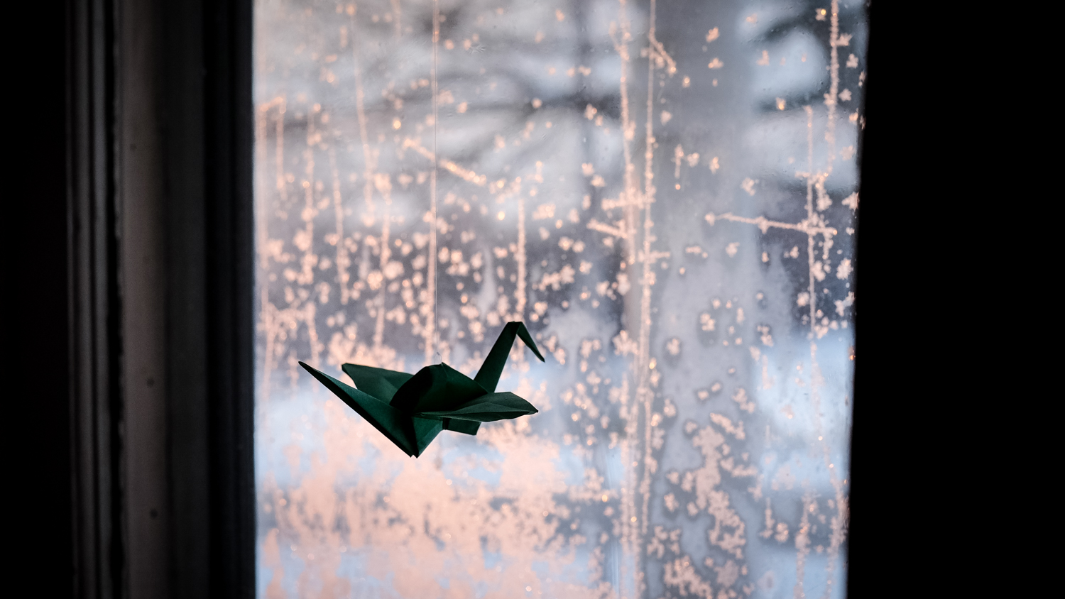 Image: I normally just walk right by windows. But the light, frost and paper crane caught my eye.