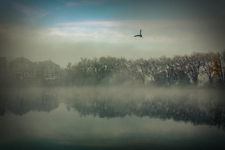 https://i1.wp.com/digital-photography-school.com/wp-content/uploads/2019/03/tip-best-reflections-6-1.jpg?resize=717%2C478&ssl=1