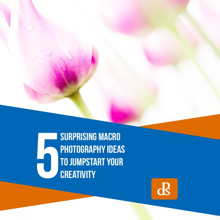 5 Surprising Macro Photography Ideas to Jumpstart Your Creativity