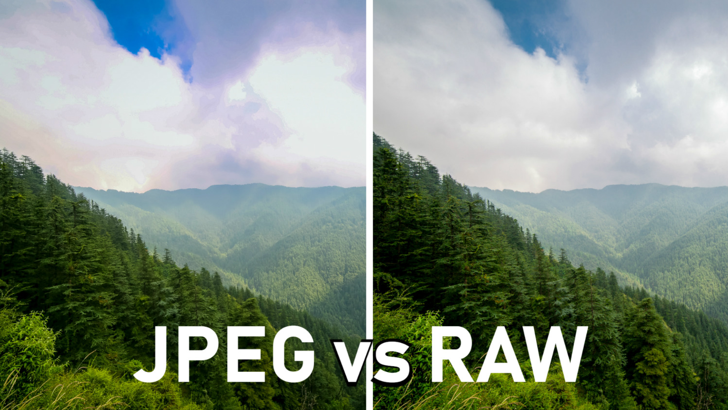 RAW vs JPEG Format Editing in Lightroom