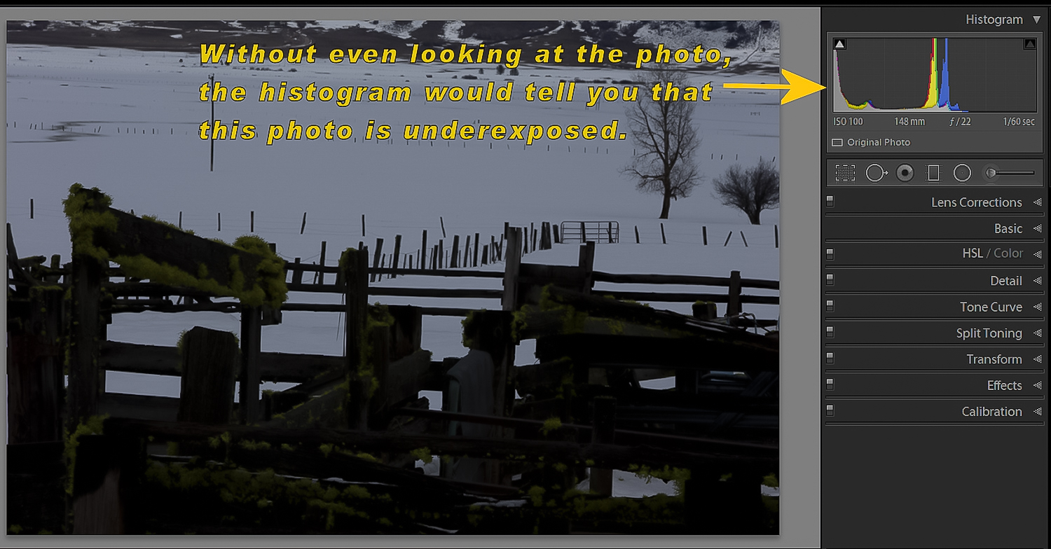 Image: Learning how to interpret a histogram will greatly aid you in your growth as a photographer.