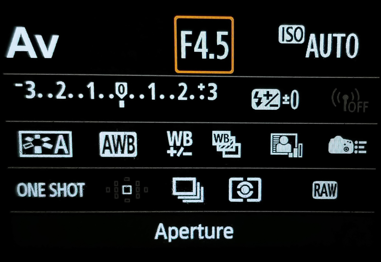 A Beginners Guide to Auto ISO and other Camera Modes