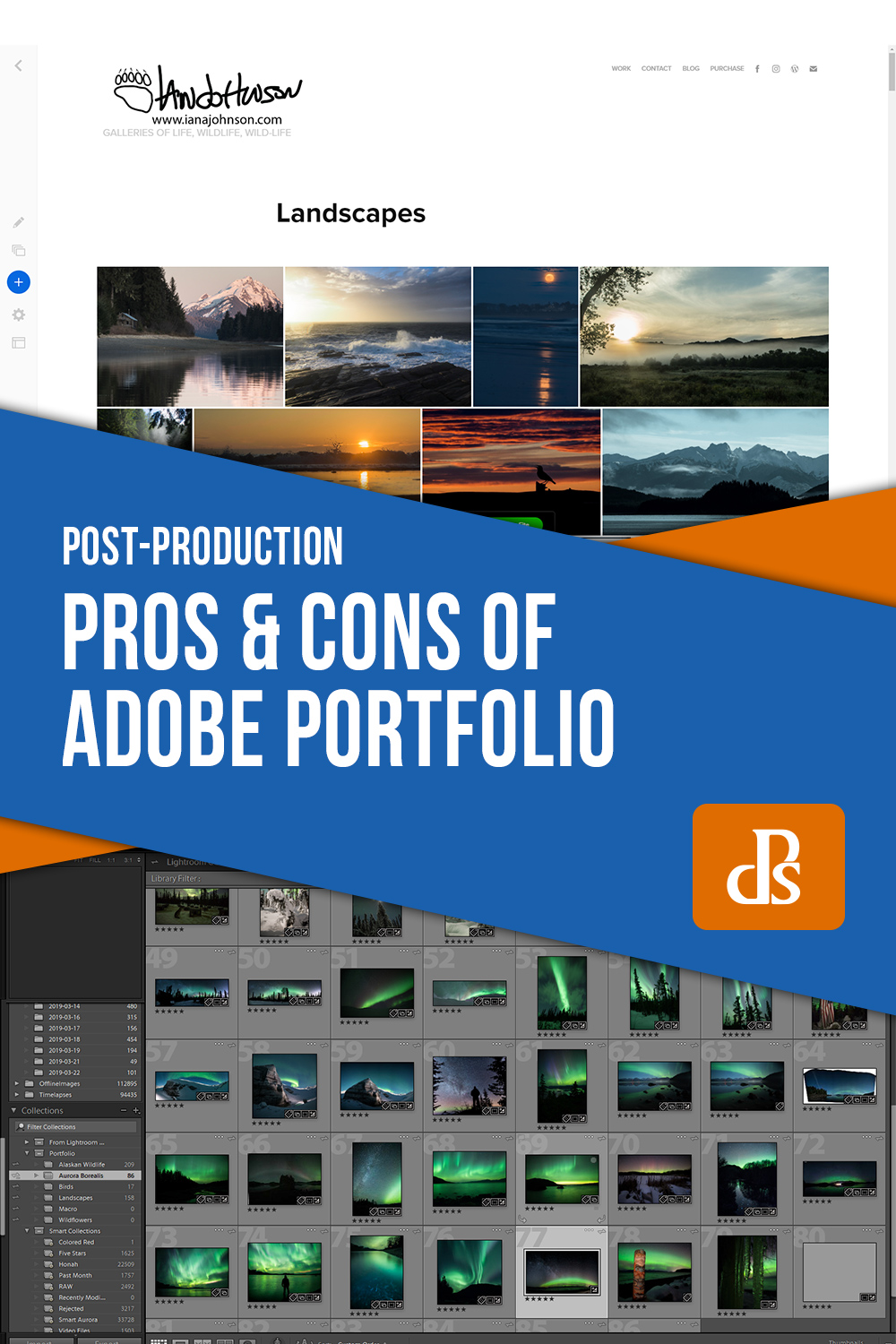 Pros and Cons of Adobe Portfolio For Your Professional Gallery