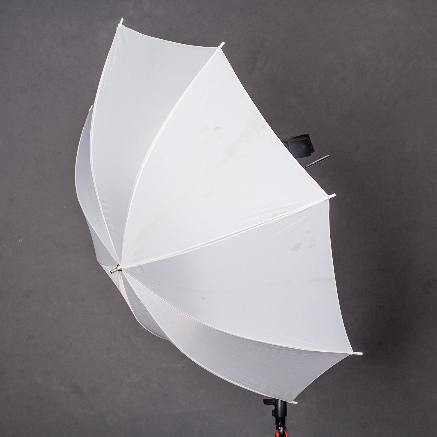 Image: Translucent umbrellas also provide soft light, but they aren't as directional as softbo...