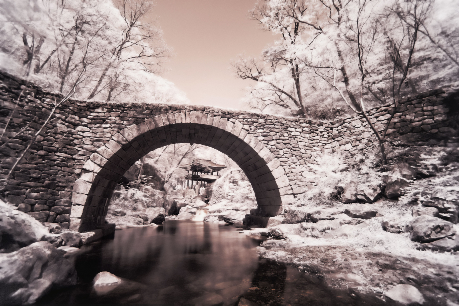 Image: Infra-red photography can create interesting scenes on a sunny day.