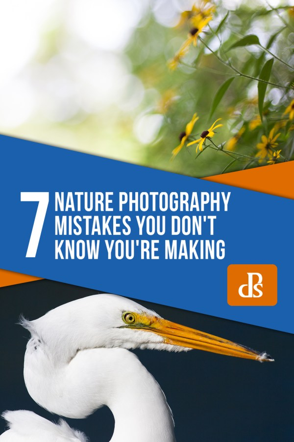 The 7 Nature Photography Mistakes You Don't Know You're Making