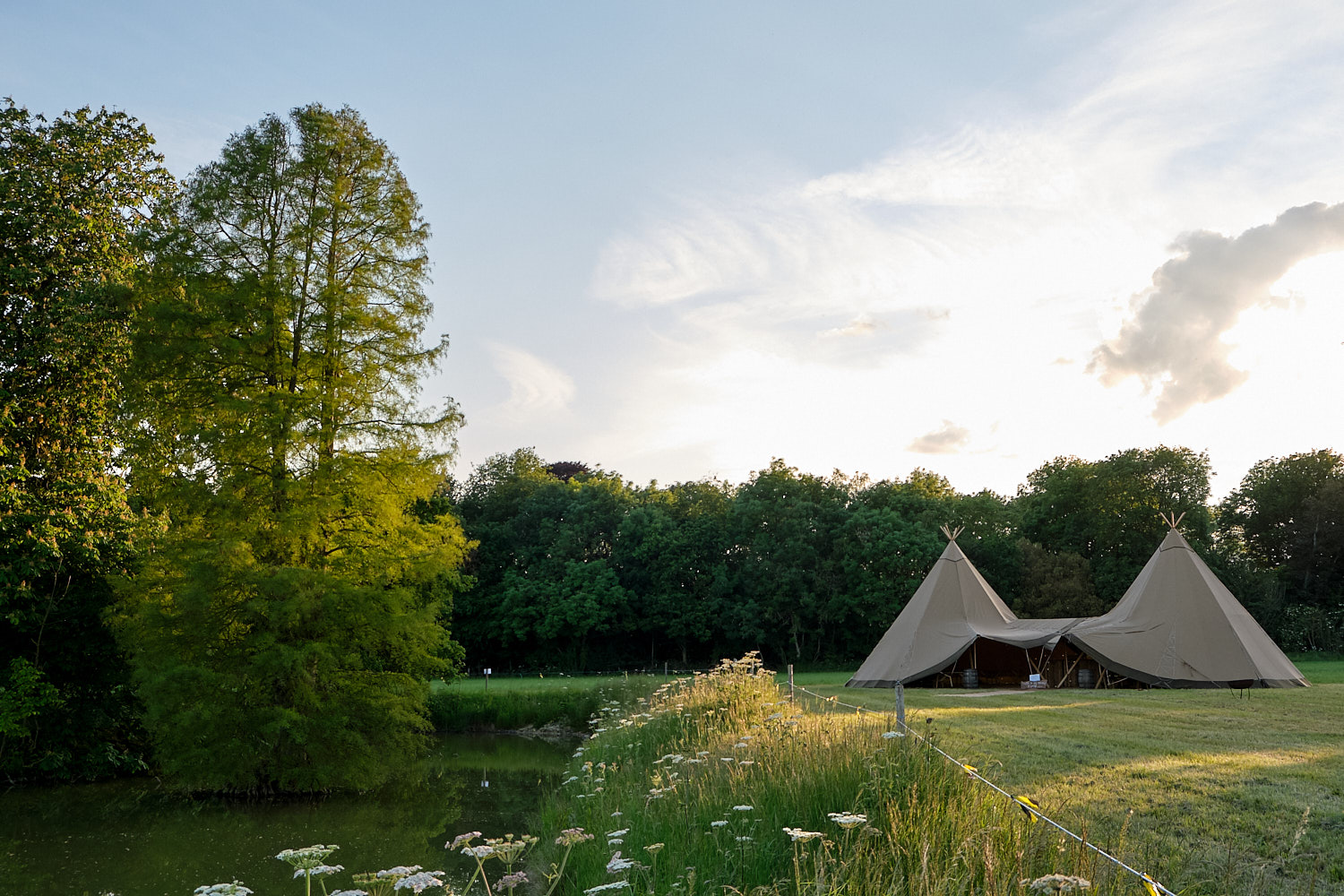 A tipi near a pond with a tree growing out of it.