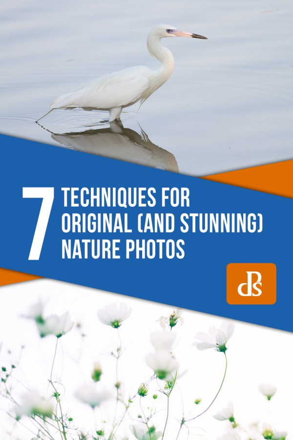 7 Techniques for Original (and Stunning) Nature Photos