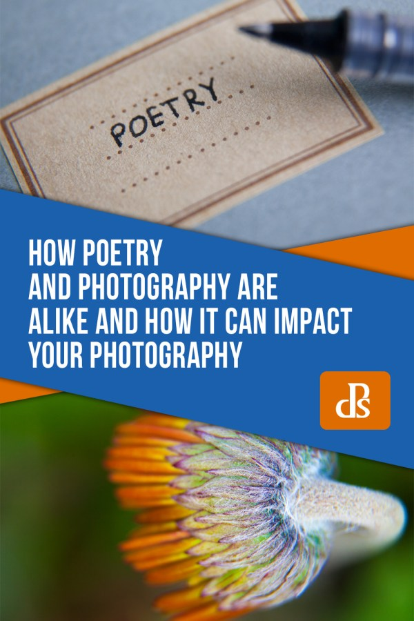 How Poetry and Photography are Alike and How it Can Impact Your Photography