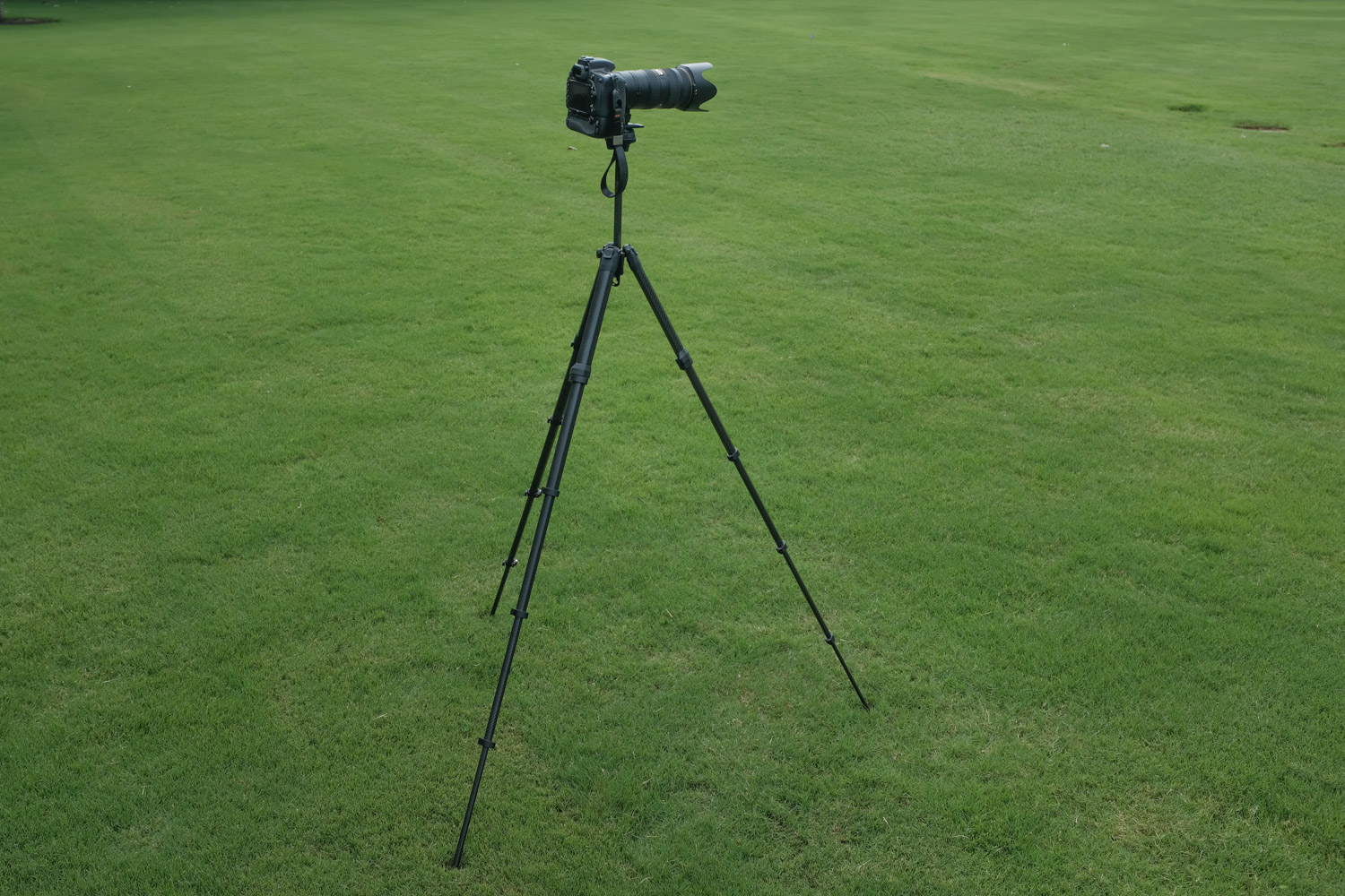 Image: With the legs and center column fully extended the Travel Tripod is almost the same size as m...