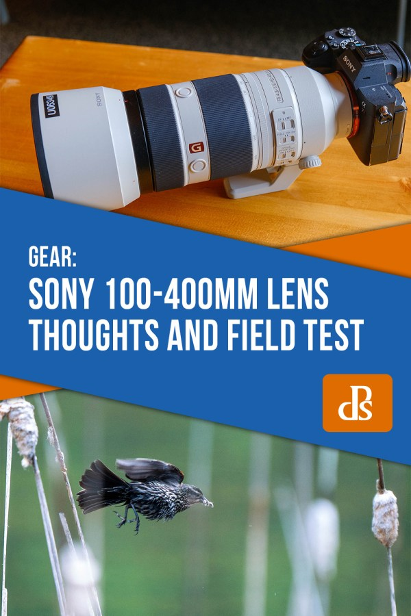 The Sony 100-400mm Lens Thoughts and Field Test
