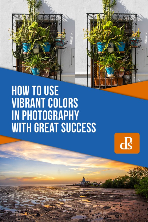 How to Use Vibrant Colors in Photography with Great Success