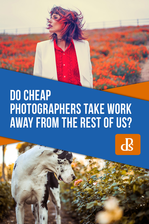 cheap-photographers-take-work-away