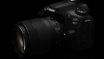 The 5 Best Low Light DSLRs You Can Buy in 2019