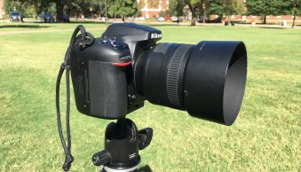Lens Hoods: What Are They Really For, and Do You Need Them?