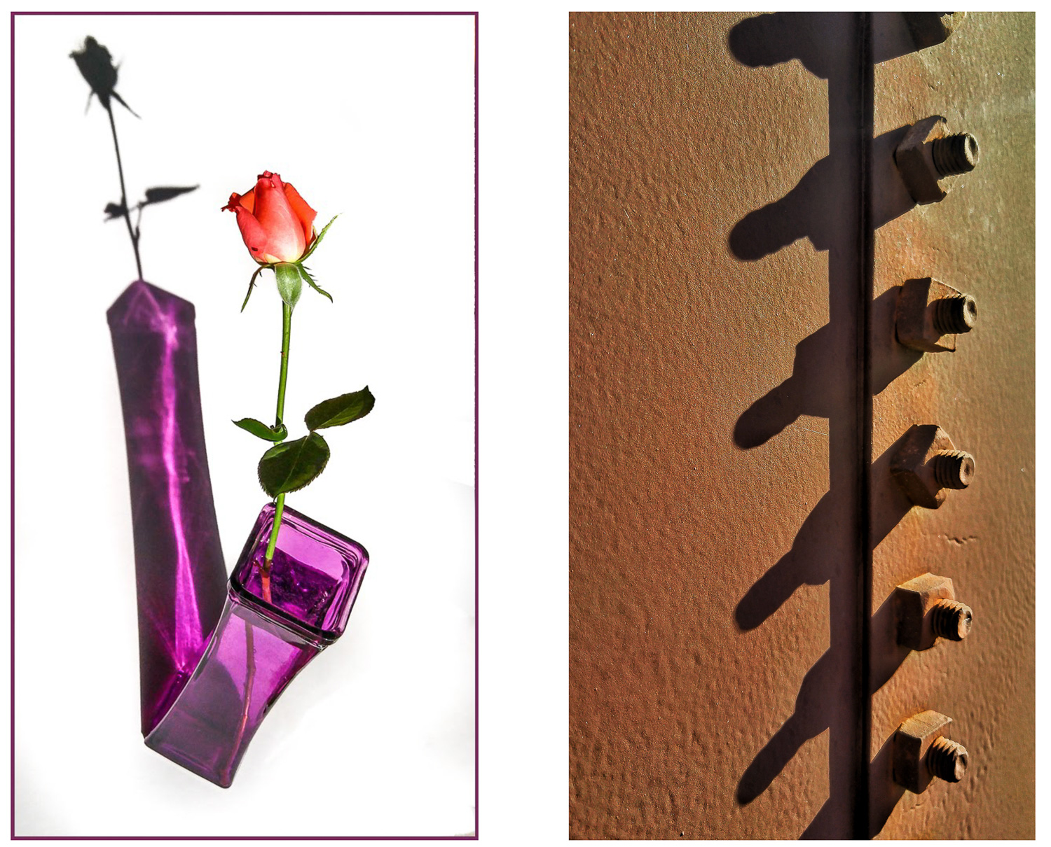 Image: The shadows are as much the subject as the other objects in these photos.