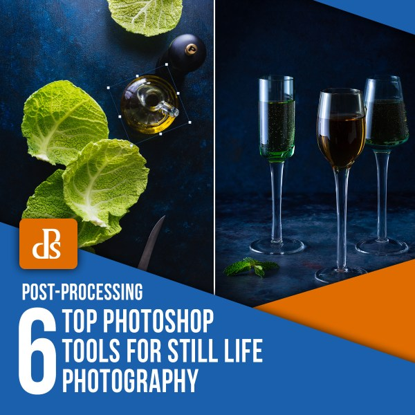 The 6 Top Photoshop Tools for Still Life Photography
