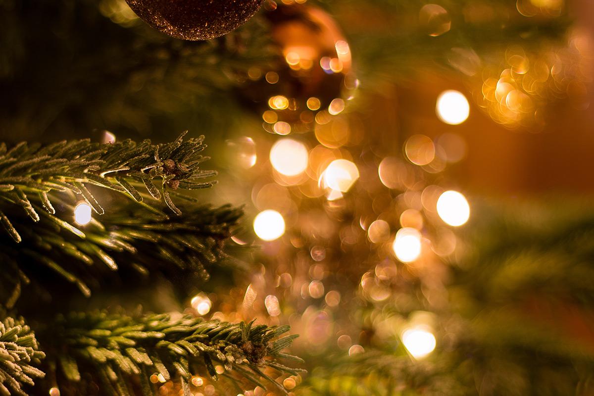 Weekly Photography Challenge – Christmas