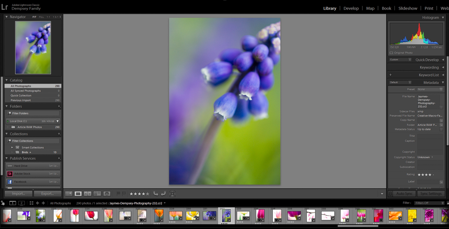 How to Make Your Photos Pop in Lightroom (With Just 4 Quick Edits!)