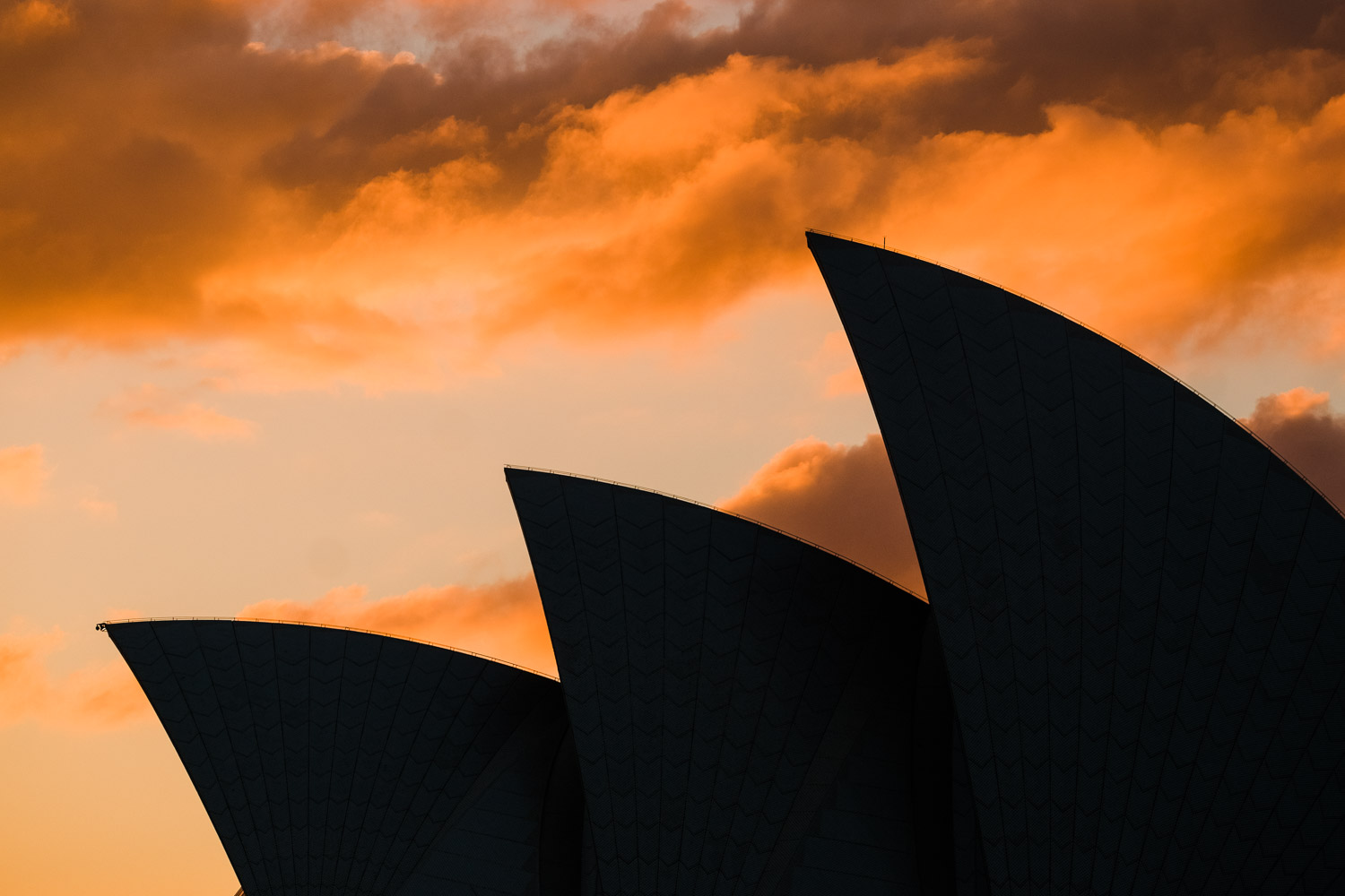 Image: Early morning on Sydney Harbour. I love how you can pick elements out of a scene and fill the...