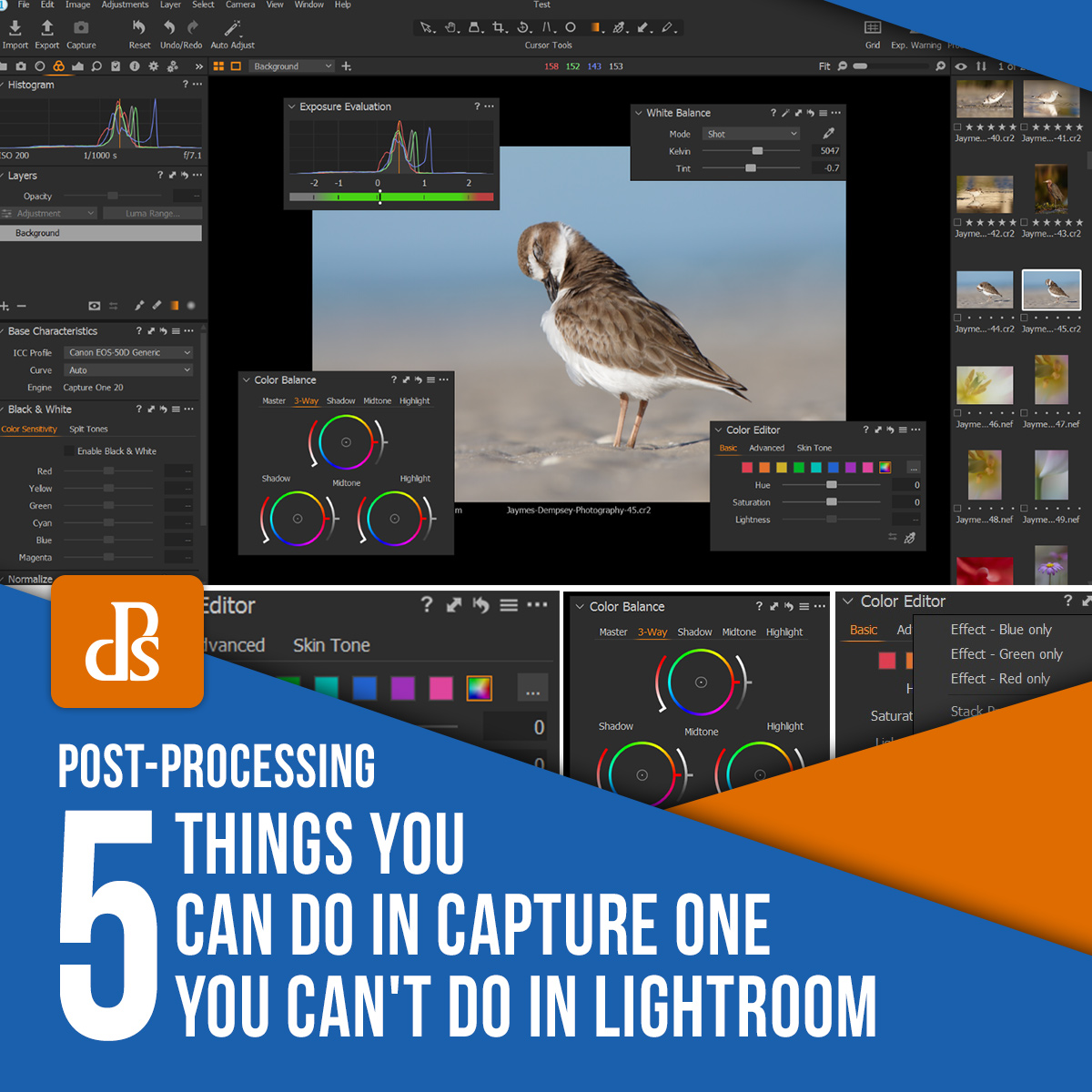 5 Things You Can Do in Capture One You Can't Do in Lightroom