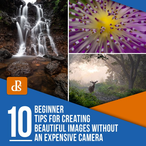 10 Beginner Tips for Creating Beautiful Images Without an Expensive Camera