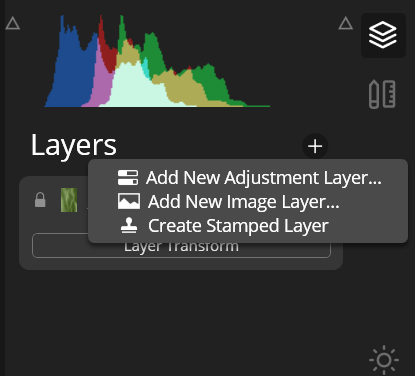 Luminar vs Lightroom layer editing