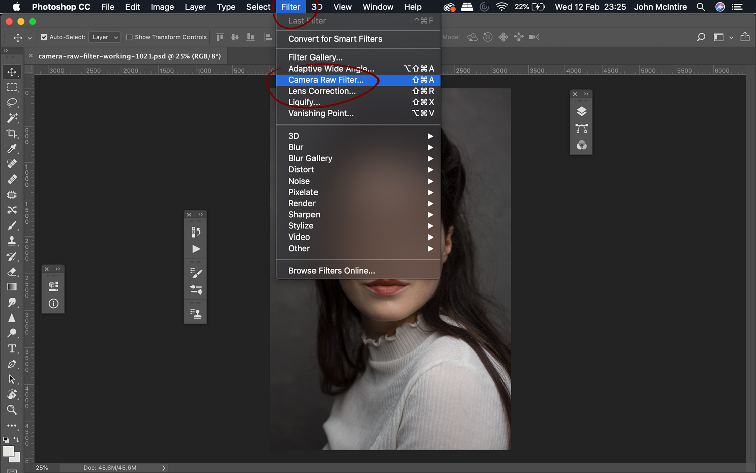 Finding the Photoshop Camera Raw Filter.