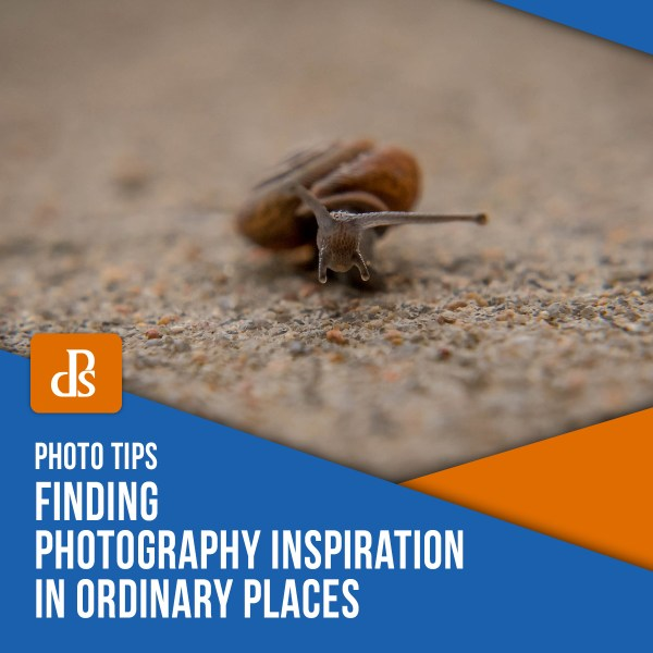 Finding Photography Inspiration in Ordinary Places