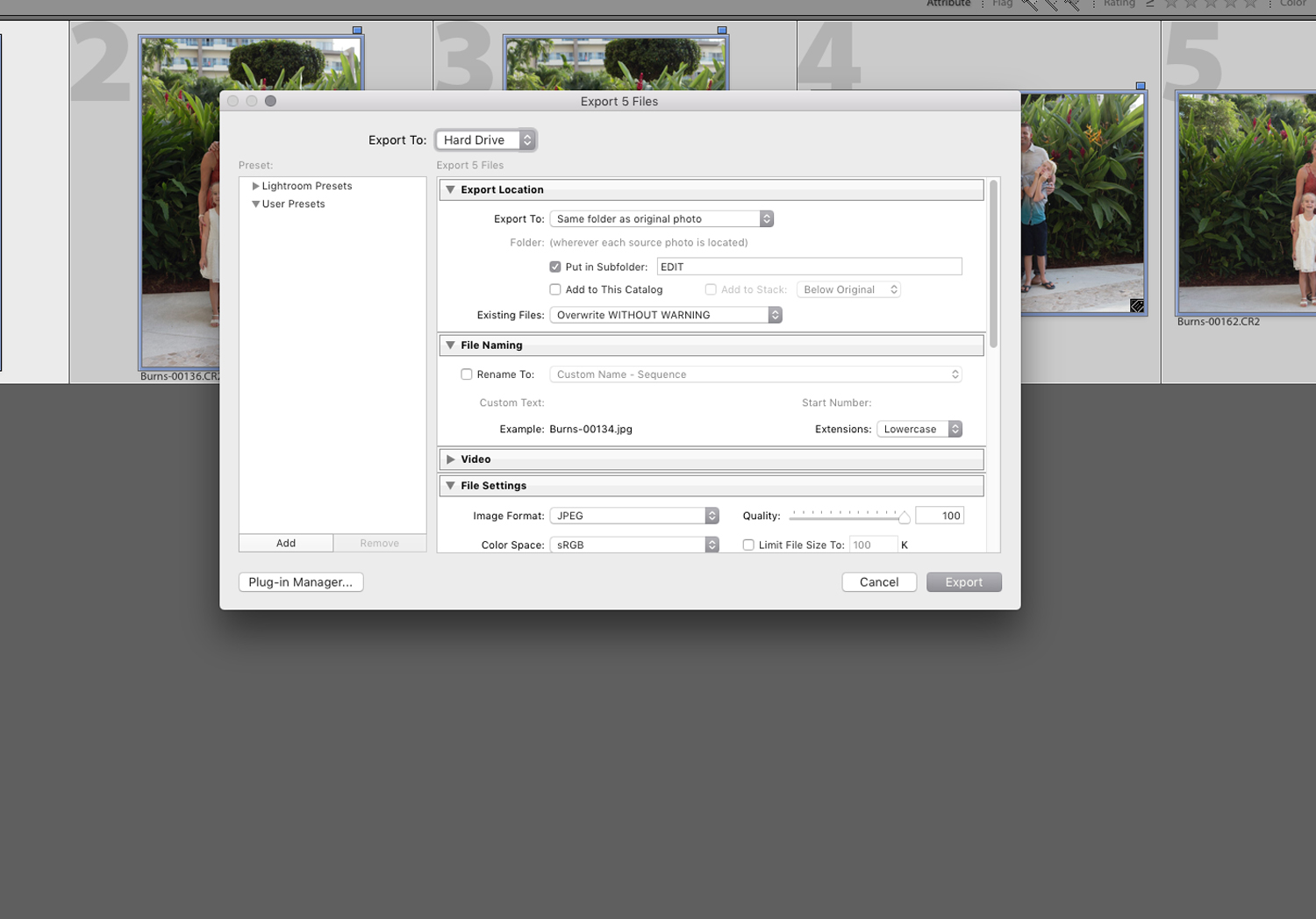 File Management Tips to Create a More Efficient Photography Workflow