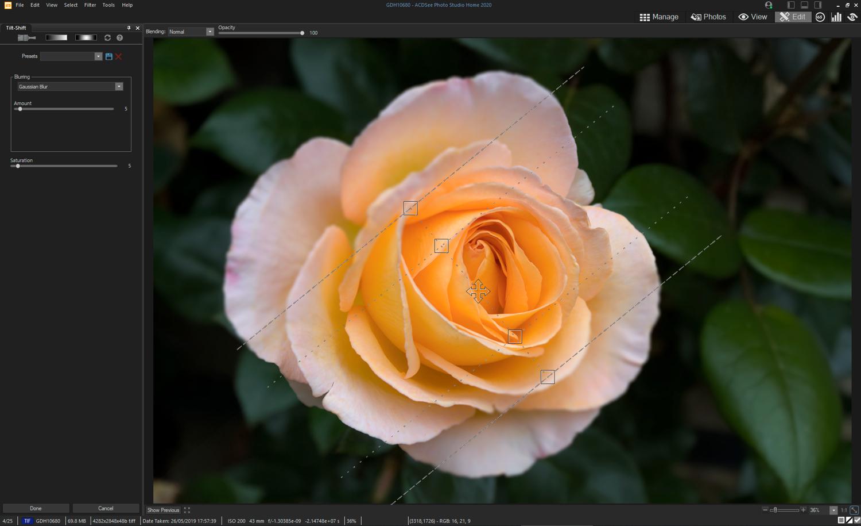 tilt-shift filter on flower - ACDSee Photo Studio Home 2020
