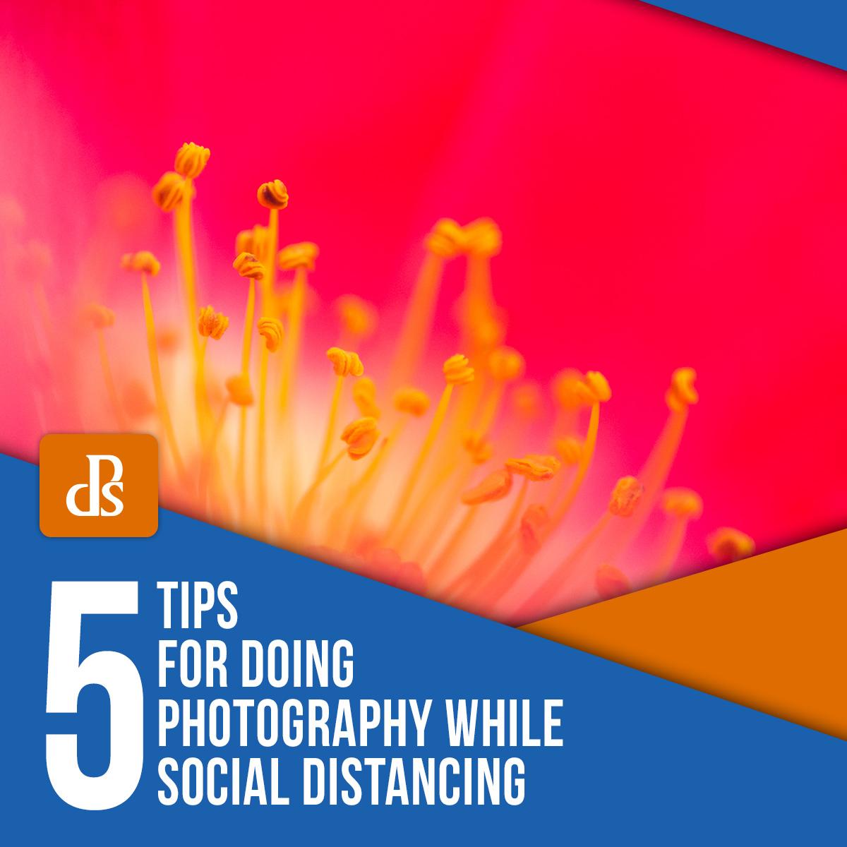 5 dicas para tirar fotos enquanto socialmente ausente