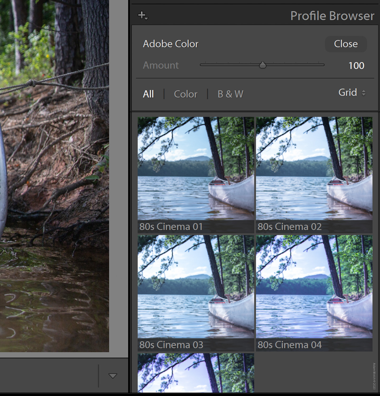 Lightroom preset compatibility with creative profiles