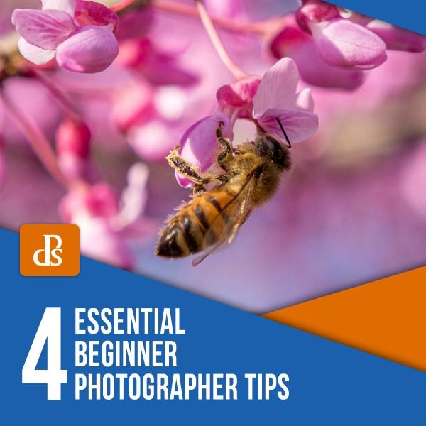 Four Essential Beginner Photographer Tips