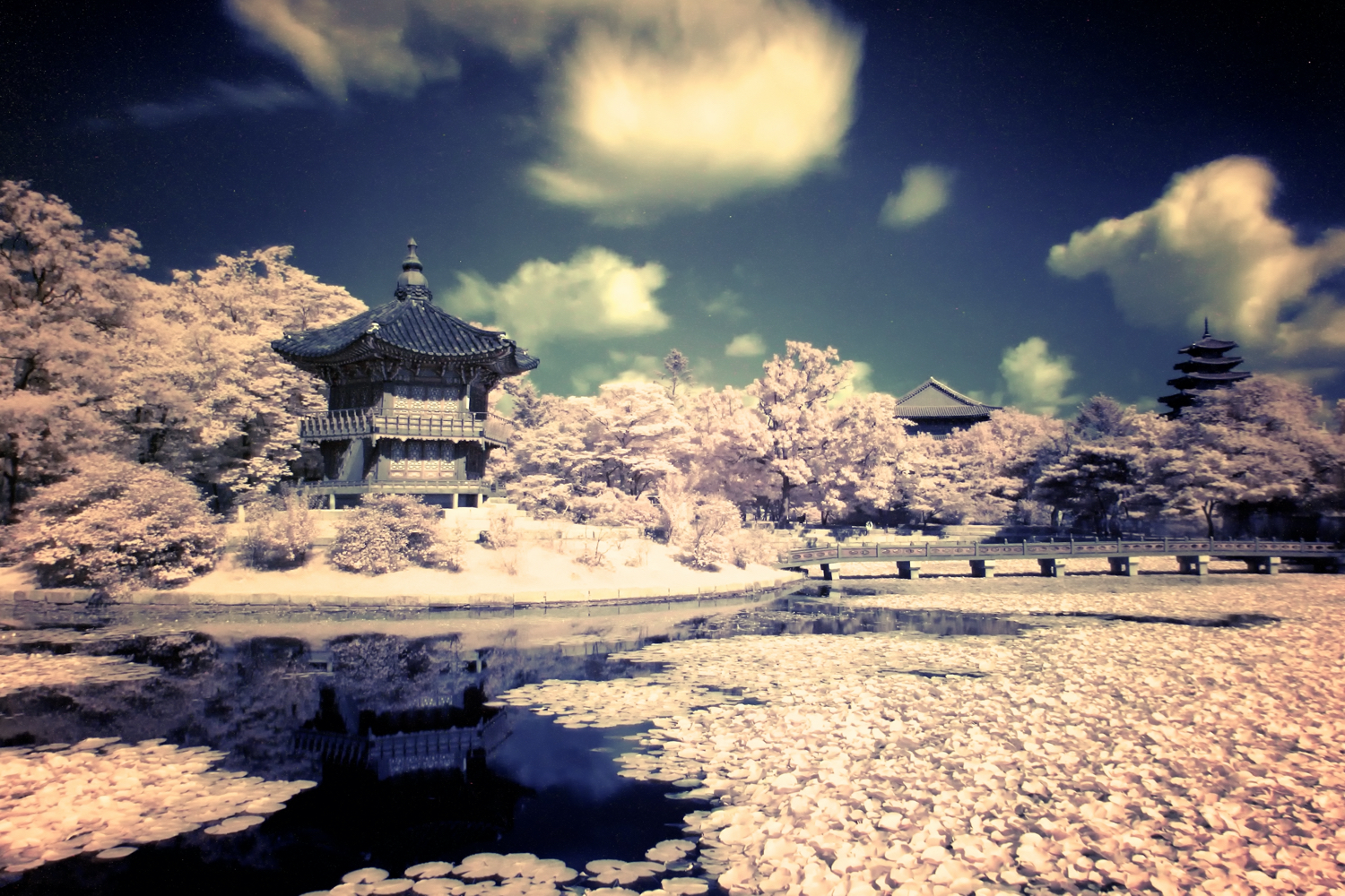 4 Ways to Create Awesome Infrared Images