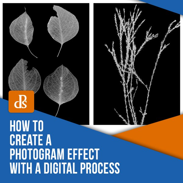 Como criar um efeito de quadro com um processo digital