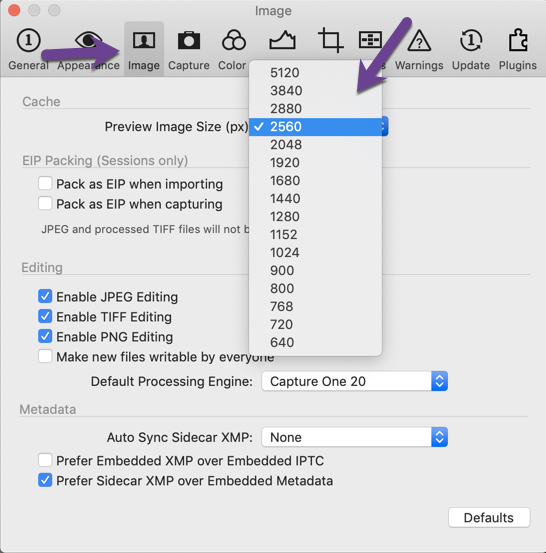 Organizing Photos in Capture One Pro - Preview Size screenshot