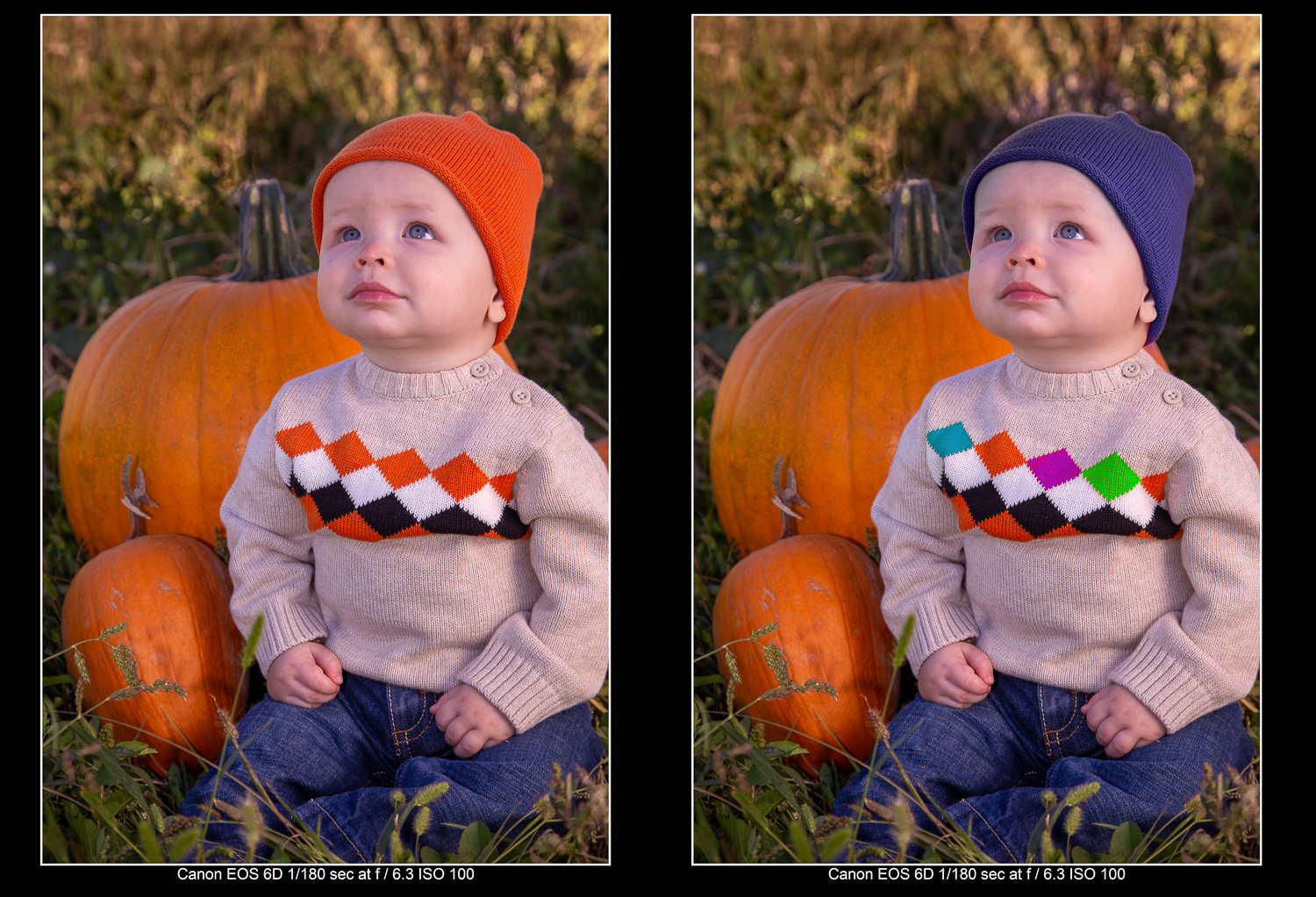 Before and After using the Lightroom Hue Control