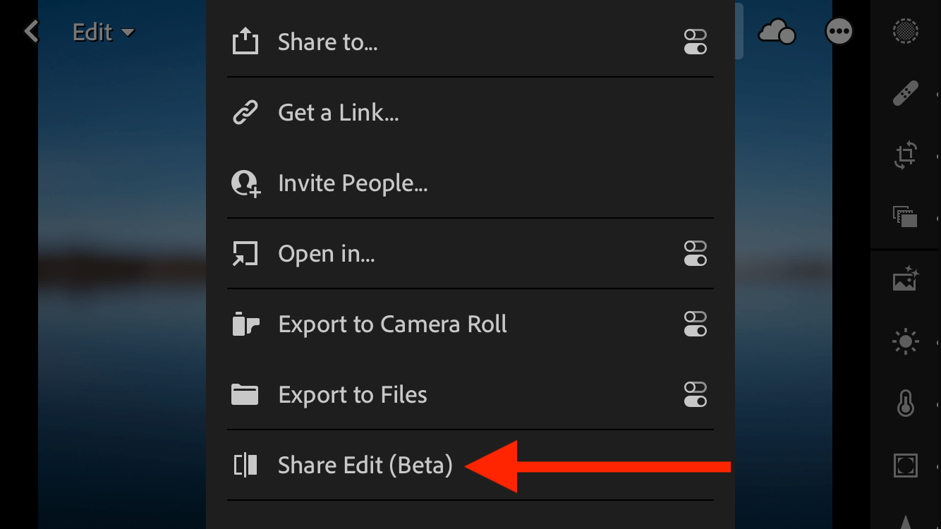 Lightroom Mobile Share Your Edit Feature
