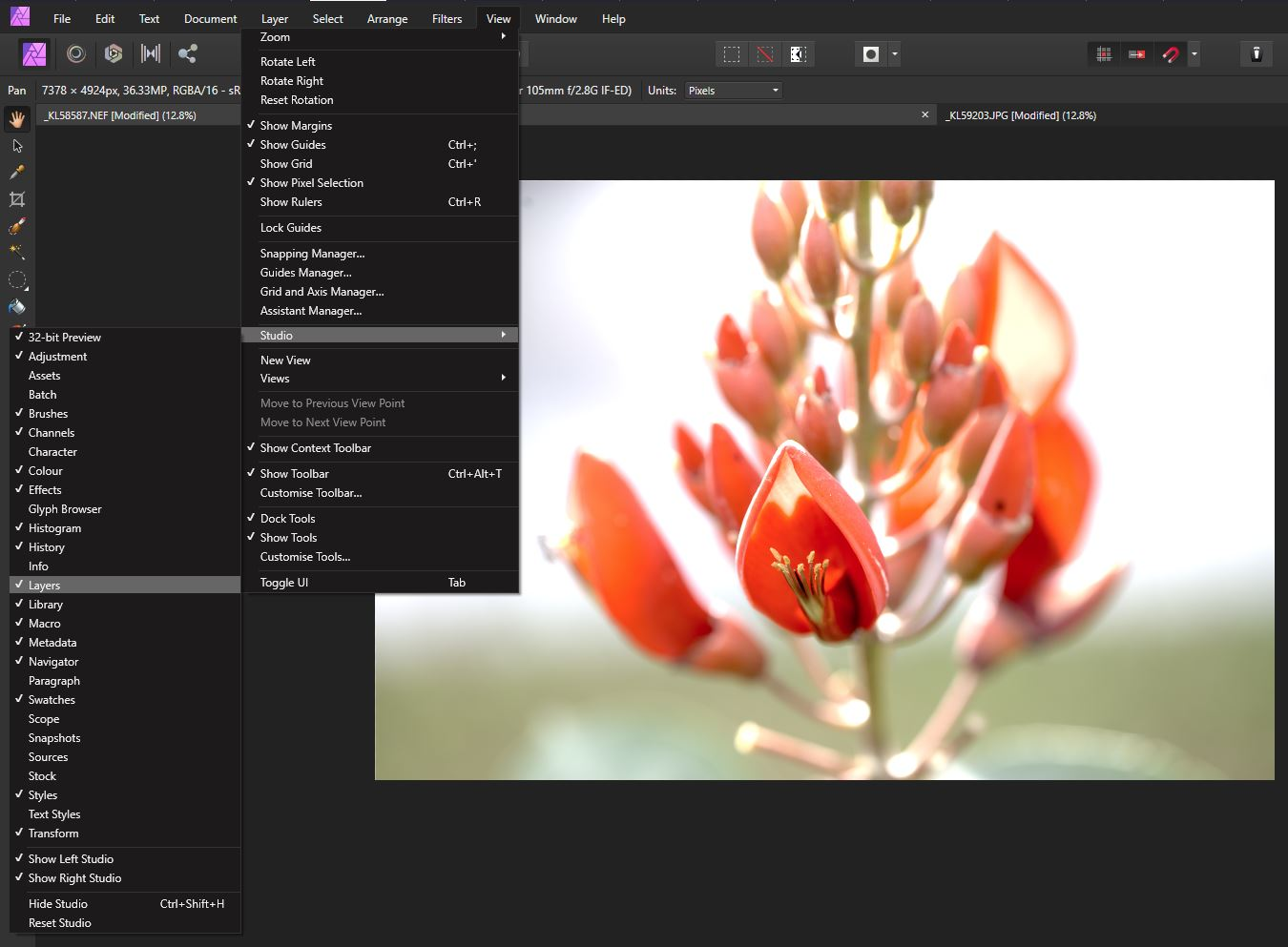 customizing panels in Affinity Photo