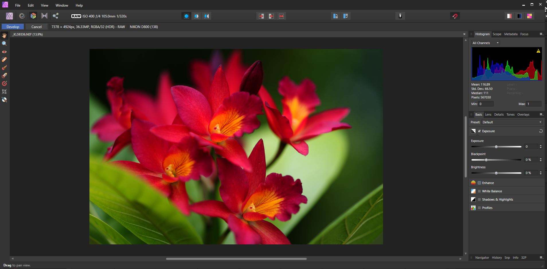 opening a RAW file in Affinity Photo