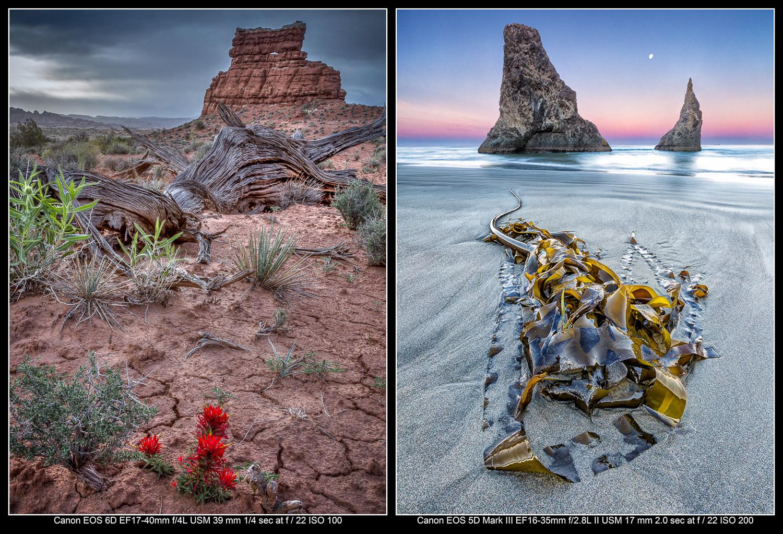 Exemplos de fotografia de estilo próximo a distante.