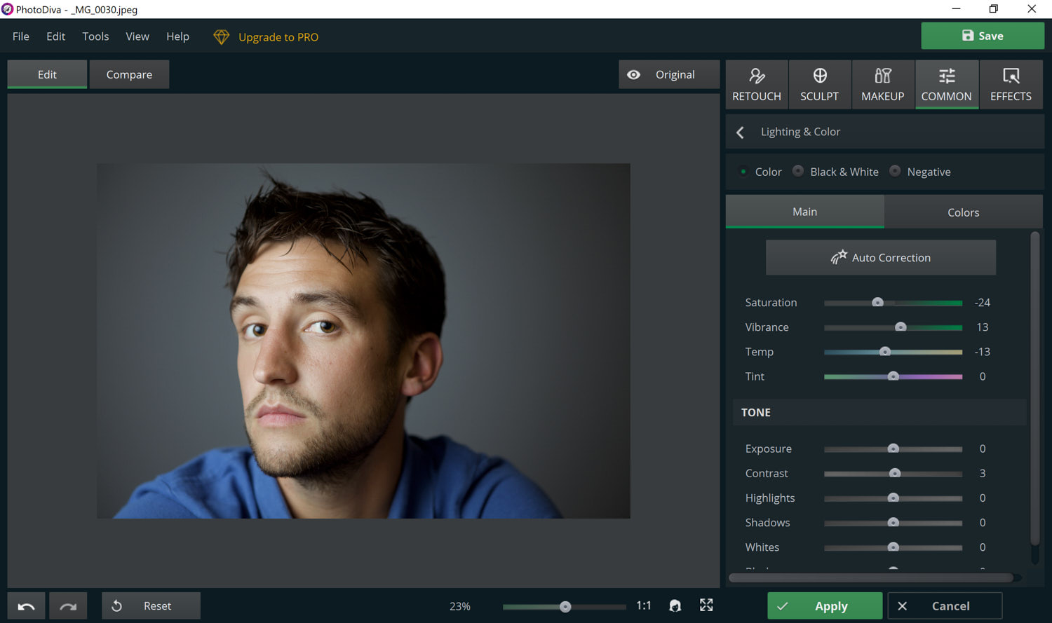 screenshot of editing features in PhotoDiva