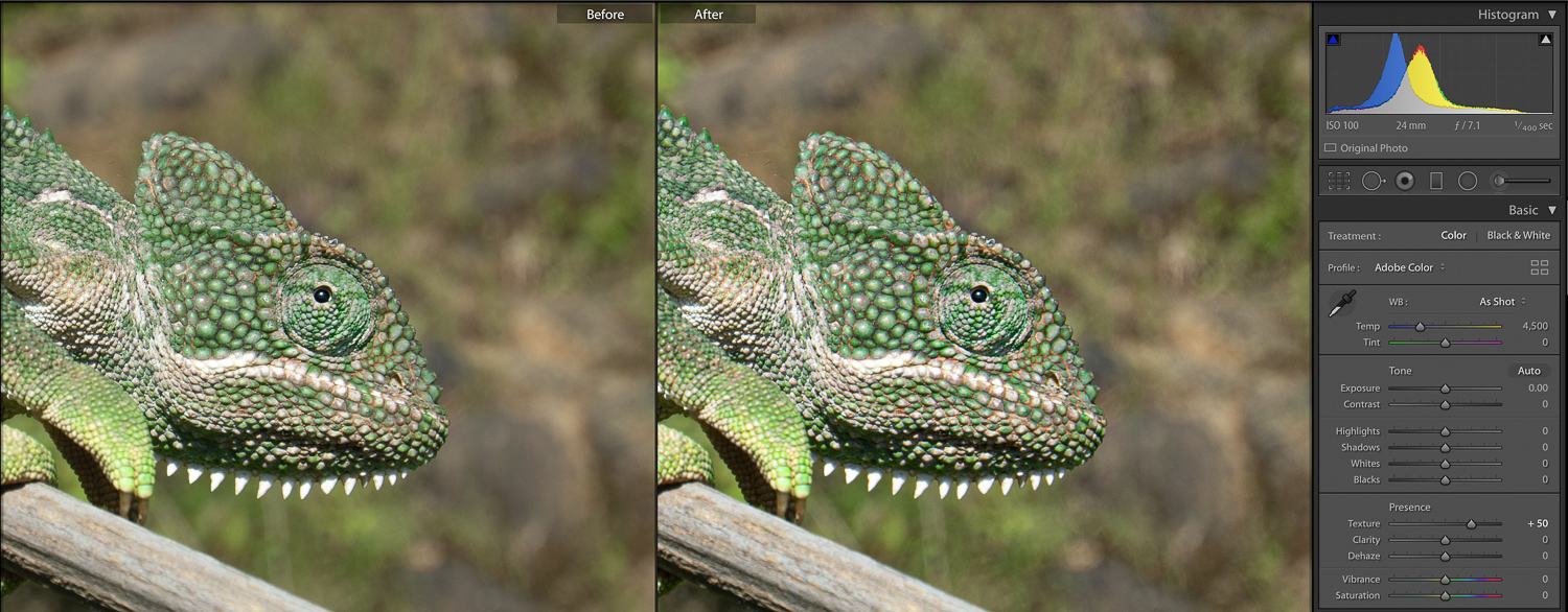 texture slider before and after lightroom tools nature photography